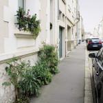 Rue partiellement végétalisée par les habitants, Tours (37)